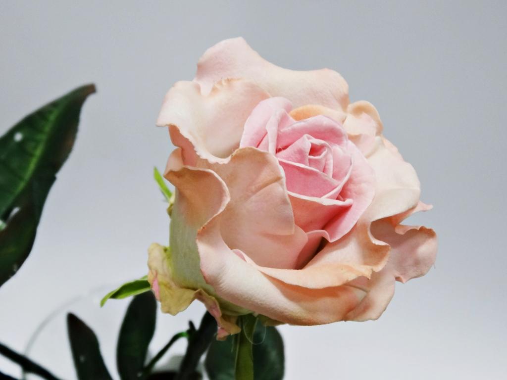 arthobbystudio lublin0009warsztaty foamiran lina roza