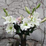 arthobbystudio lublin0005warsztaty foamiran kwiaty 150x150
