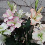 arthobbystudio lublin0006warsztaty foamiran kwiaty 150x150
