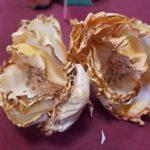 arthobbystudio lublin0022warsztaty foamiran kwiaty foamiranu 150x150