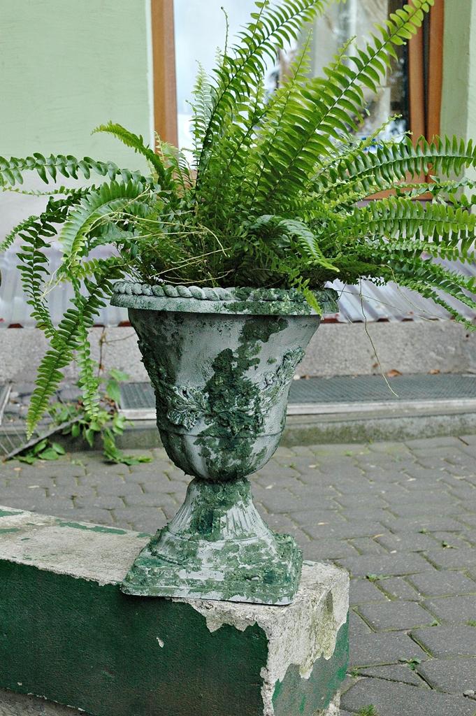 arthobbystudio lublin0017warsztaty efekt betonu mchu stylizacja ornament donica palacowa