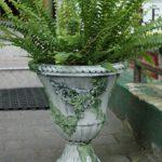 arthobbystudio lublin0018warsztaty efekt betonu mchu stylizacja ornament donica palacowa 150x150