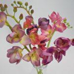 arthobbystudio lublin0003warsztaty foamiran kwiatyzfoamiranu pianka frezja 150x150