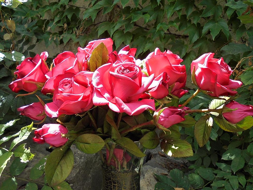 arthobbystudio lublin0009warsztaty foamiran kwiatyzfoamiranu pianka roza