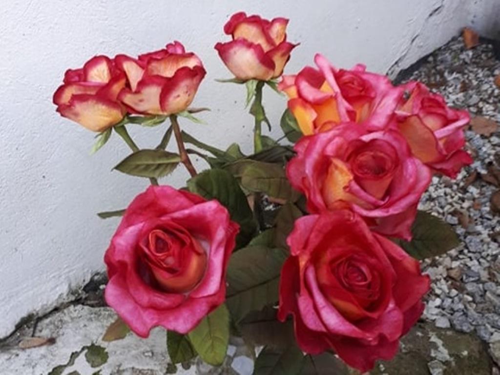 arthobbystudio warsztaty025 20191121foamiran kreatywna pianka kwiaty z foamiranu