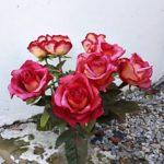 arthobbystudio warsztaty047 20191121foamiran kreatywna pianka kwiaty z foamiranu 150x150